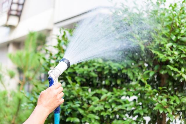 水やり|お庭のメンテナンス|千葉